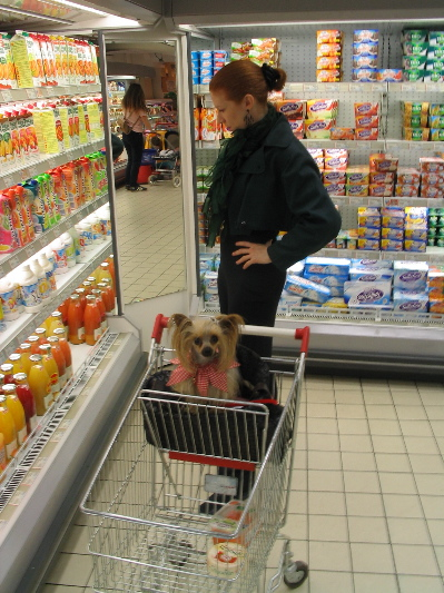 Amy Paris Groceries .jpg