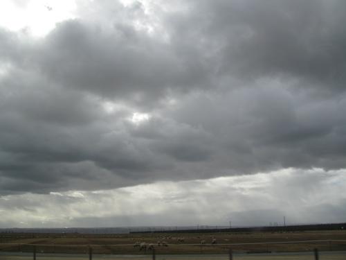 cloudlamb.jpg