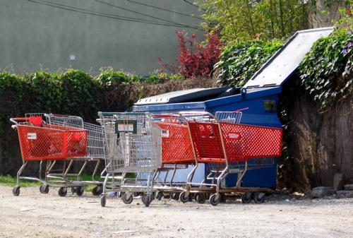 grocerycarts.jpg