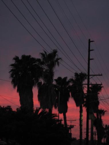 sunsetLA.jpg